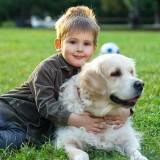 Safe for Kids & Pets